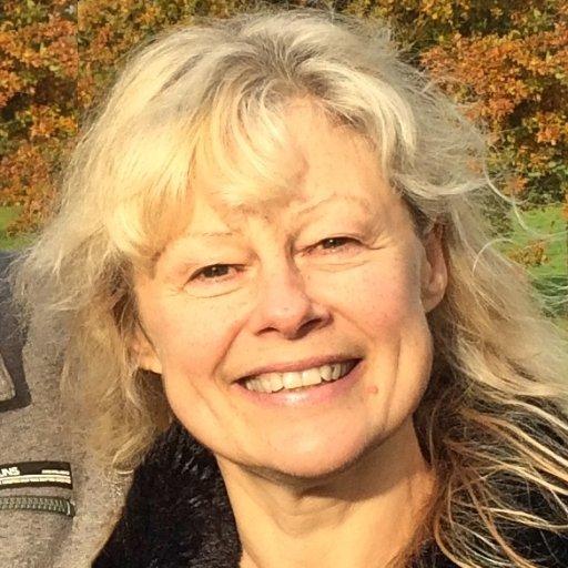 Sonia Van Ballaert